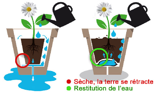Coussin d'eau pour plante en pot - Principe